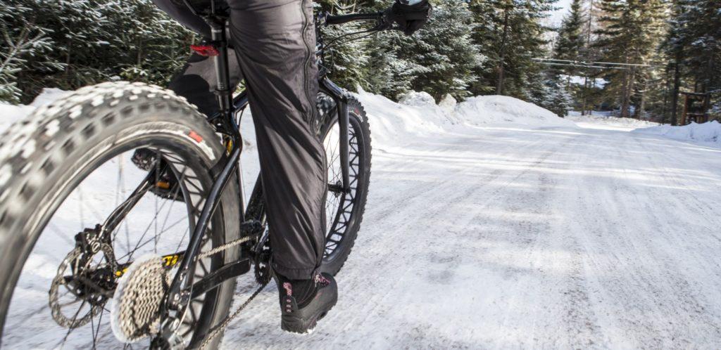 Fat Tire Bike Bart Haynes