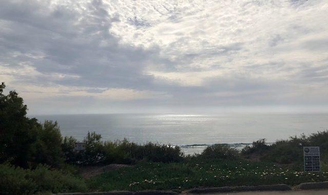 Bart Haynes bike blog San Diego ride update 4.17