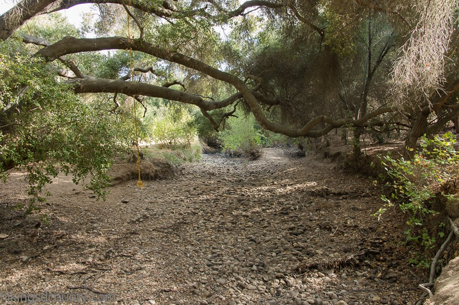 Barton Haynes Trail