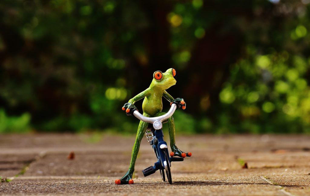 Barton Haynes Bicycle Funny