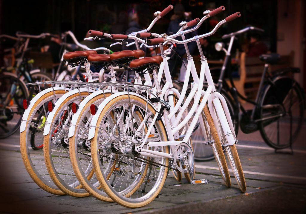 Barton Haynes Bikes
