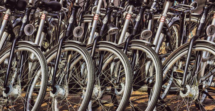 Bart Haynes San Diego Bike